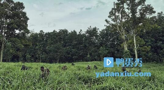 湄公河行动剧照